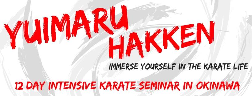 Karate seminar in Okinawa - click for info